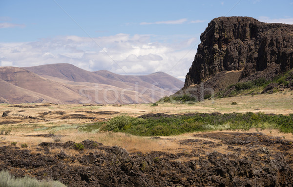 Horsethief Butte Columbia River Valley Washington State Stock photo © cboswell