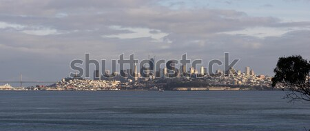 San Francisco California Downtown City Skyline Fisherman's Wharf Stock photo © cboswell