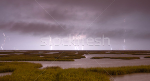 Electrical Storm Approaches lightning Strikes Galveston Texas Stock photo © cboswell