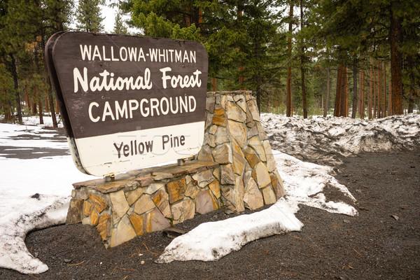 Wallowa Whitman National Forest Yellow Pine Campground Sign Oreg Stock photo © cboswell