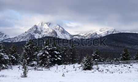 Sawtooth Mountain Range Deep Winter Landscape Idaho National Rec Stock photo © cboswell