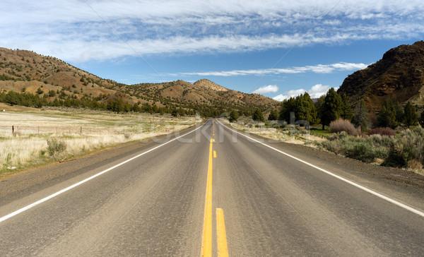 Oregon percorso 26 autostrada alto deserto Foto d'archivio © cboswell