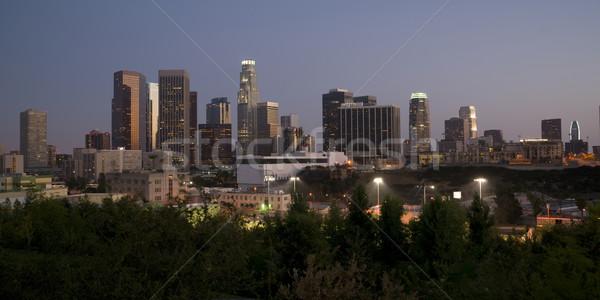 Los Angeles poziomy panoramę zmierzch miasta lasu Zdjęcia stock © cboswell