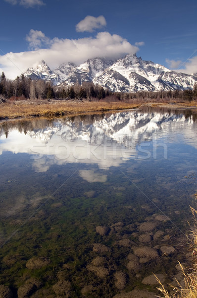 Snake River Cloud Cover Jagged Peaks Grand Teton Wyoming Vertica Stock photo © cboswell