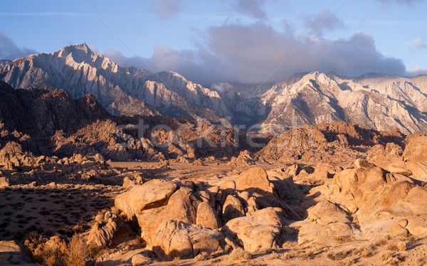 Golden Alpine Sunrise Alabama Hills Sierra Nevada Range Californ Stock photo © cboswell