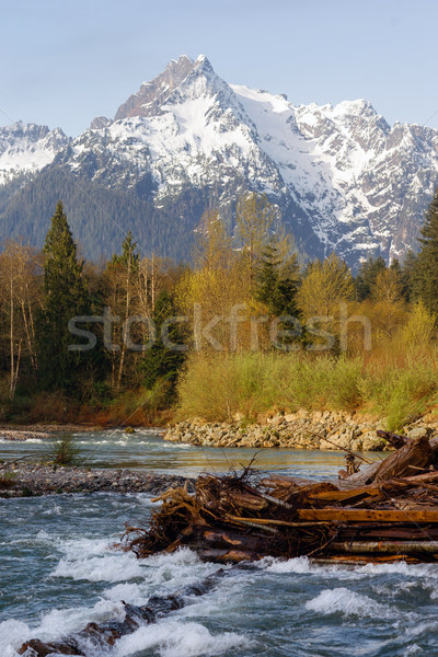 Whitehorse Mountain North Cascades Darrington WA Sauk River Stock photo © cboswell