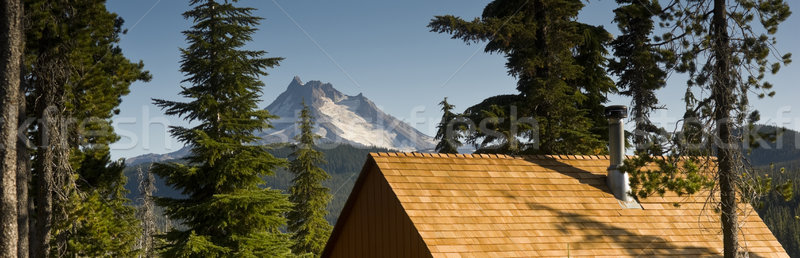 Panoramic View of Cabin Rooftops Around Lake Near Mount Jefferso Stock photo © cboswell