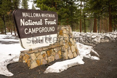 Makheaur National Forest Entrance Sign Oregon Wilderness Stock photo © cboswell