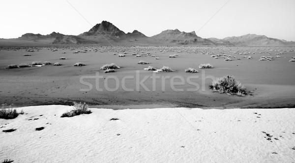High Contrast Monochrome Black White Bonneville Salt Flats Stock photo © cboswell