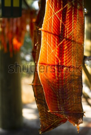 King Salmon Fish Meat Catch Hanging Native American Lodge Drying Stock photo © cboswell