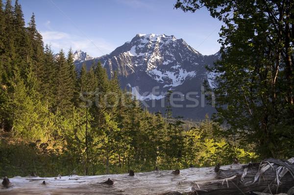 Fire Road Overlooks Big Four Peak North Cascades Mountain Range Stock photo © cboswell