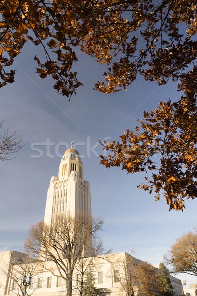 Nebraska gebouw overheid koepel architectuur bladeren Stockfoto © cboswell