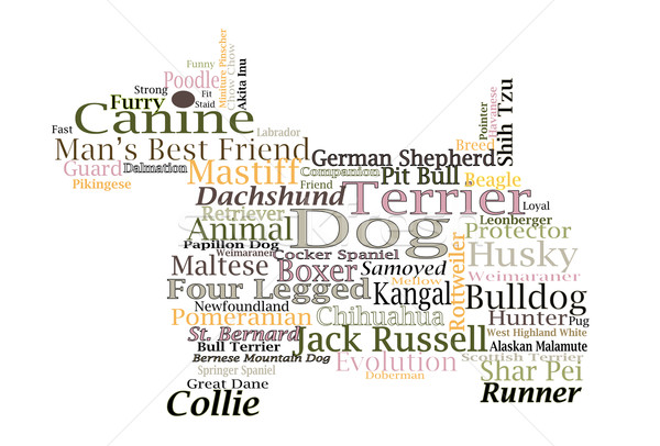 Dog breed Canine Word Cloud Typography Illustration Concepts Ideas Stock photo © cboswell