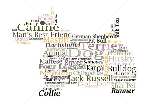 Hondenras hoektand woordwolk typografie illustratie Stockfoto © cboswell