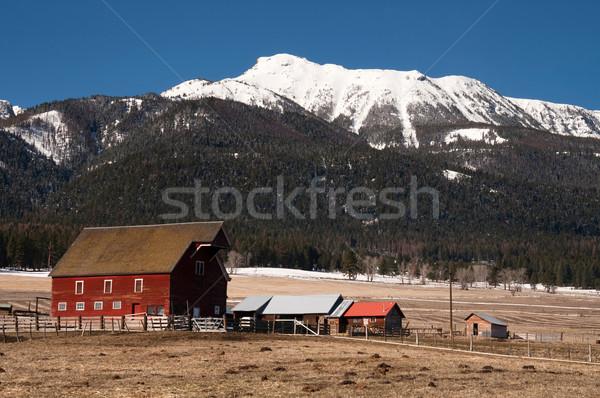 Stock photo: Red Barn Endures Mountain Winter Wallowa Whitman National Forest