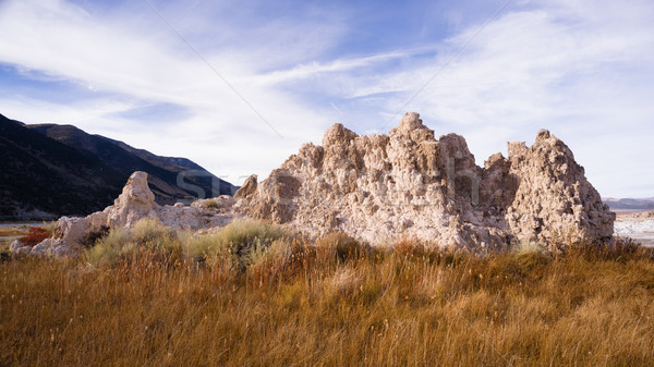 Tufa Formation Mono lake Shores Nature Landscape Stock photo © cboswell