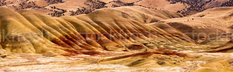 Stock fotó: Festett · dombok · kövület · USA · észak · Amerika