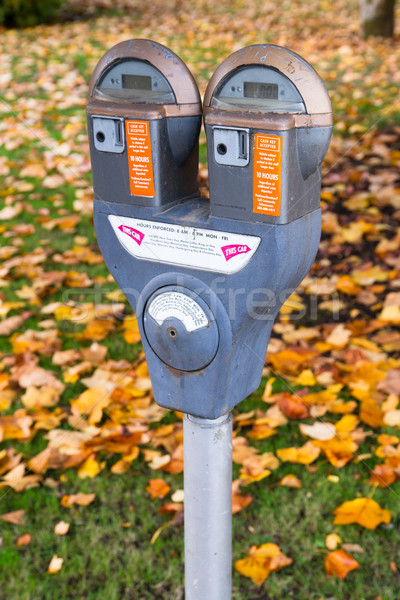Dual Parking Meter Needs Payment Coin Slot Autumn Downtown Stock photo © cboswell