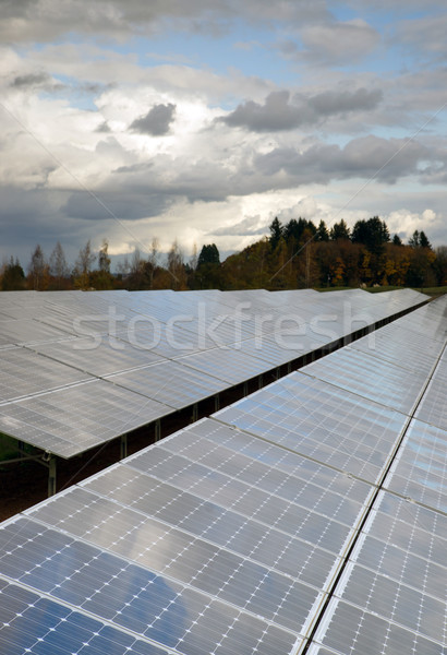 Clean Green Energy Farm Solar Power Panels  Stock photo © cboswell