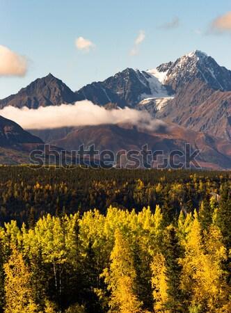 Vallen kleur veel gletsjer kant park Stockfoto © cboswell