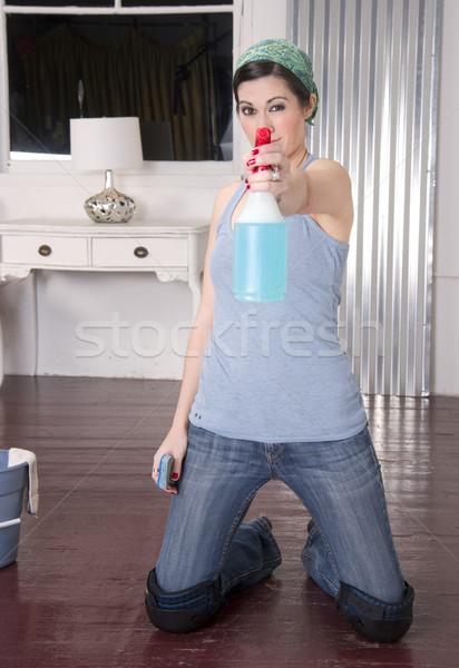Huishoudster werk werken vrouwelijke glimlachend emmer Stockfoto © cboswell