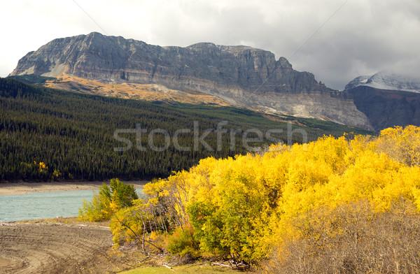 Vallen kleur meer veel gletsjer park Stockfoto © cboswell