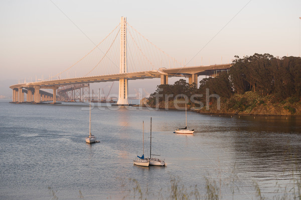 Clipper Cove Bay Bridge San Francisco Treasure Island California Stock photo © cboswell