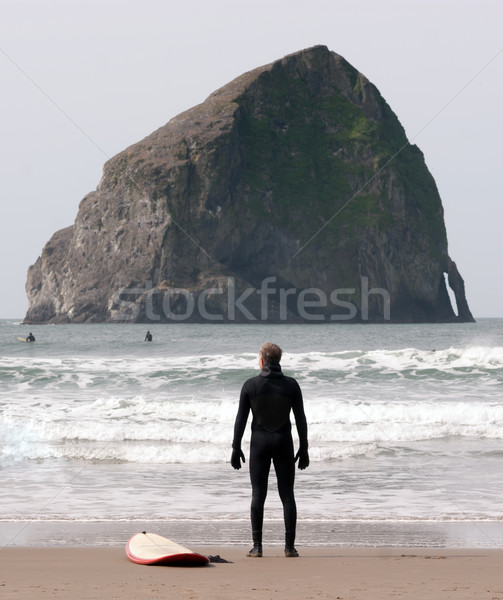 Lone Surfer Stands Looking Ocean Surf Sea Waves Surf Sport Stock photo © cboswell