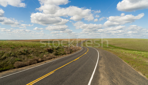 Long Winding Road Cury into The Distance Vanishing Point Stock photo © cboswell