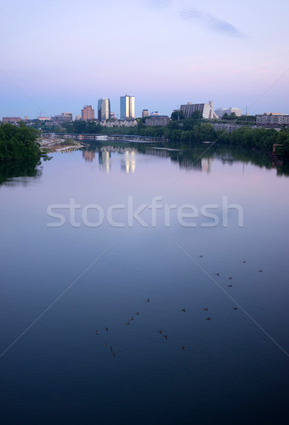 Sunrise Tennessee River Waterbirds Knoxville Downtown City Skyli Stock photo © cboswell
