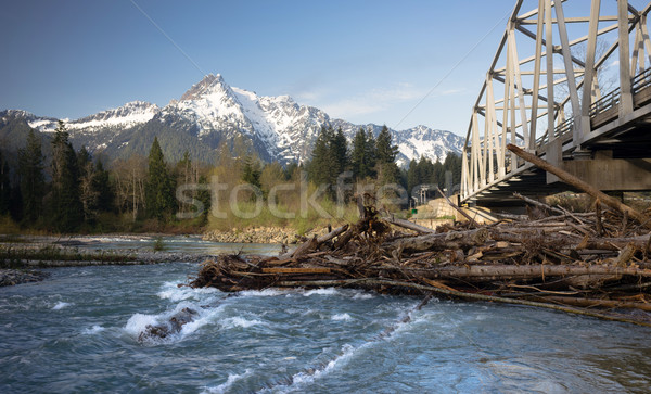 Logs jam up under the bridge on the Sauk Stock photo © cboswell