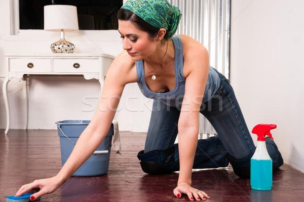 Adorable ménagère soubrette nettoyage étage Photo stock © cboswell