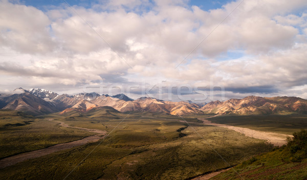 Puffy clouds blue sky Alaska Range Denali National Park Stock photo © cboswell