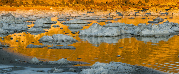 Rock Salt Tufa Formations Sunset Mono Lake California Nature Out Stock photo © cboswell