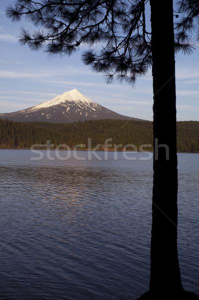 Mt Mcgloughlin Willow Lake Pine Tree Oregon Rural Country Stock photo © cboswell