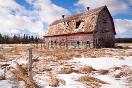 Farm mező elfeledett csőr mezőgazdasági struktúra Stock fotó © cboswell