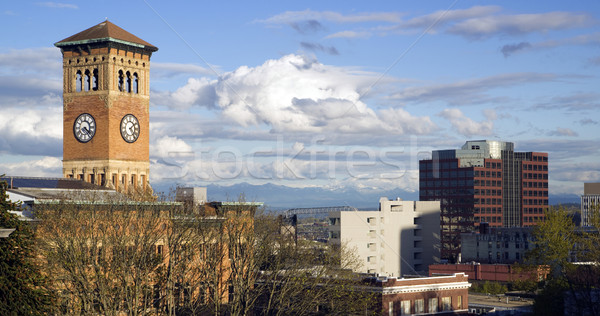 Tacoma Skyline Old City Hall Brick Building Architectural Clock  Stock photo © cboswell