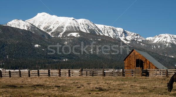 Old Horse Barn Endures Mountain Winter Wallowa Whitman National  Stock photo © cboswell