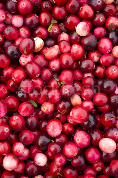 Cranberries Stock photo © cboswell