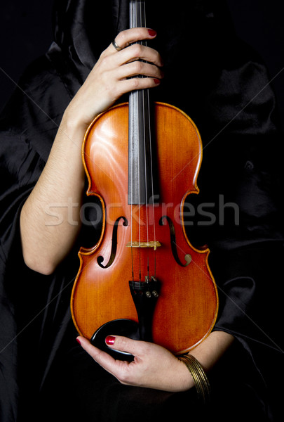 Important Violin Stock photo © cboswell