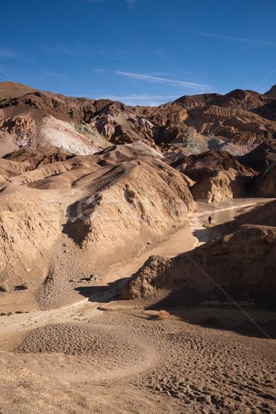 Kobieta turystyka punkt śmierci dolinie California Zdjęcia stock © cboswell