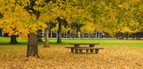 Picknicktafel najaar natuur seizoen bladeren vallen Stockfoto © cboswell