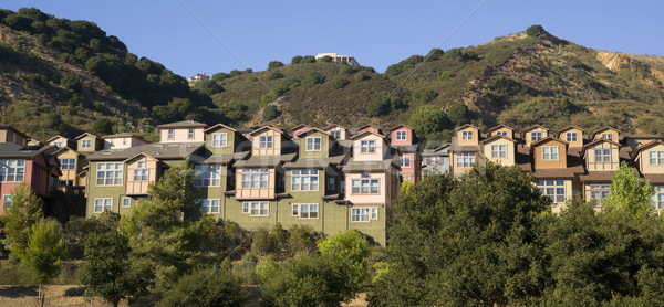 Urban Sprawl Dwellings Spring up For Domestic Living on Hillside Stock photo © cboswell