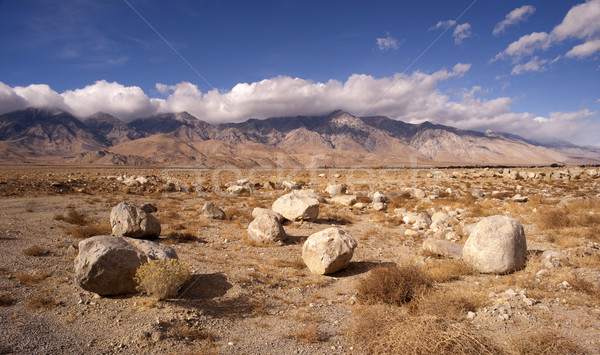 Mesquite Flat Cottonwood Mountains Death Valley Desert Landscape Stock photo © cboswell