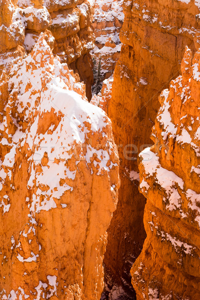 Deep Crevass Bryce Canyon National Park Rock Spires Stock photo © cboswell
