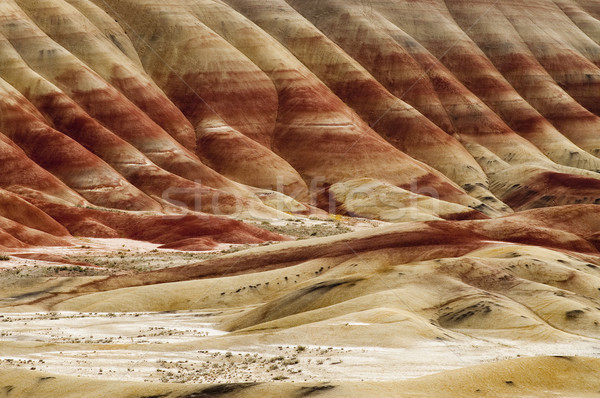 The Geology in Painted Hills Oregon State Stock photo © cboswell
