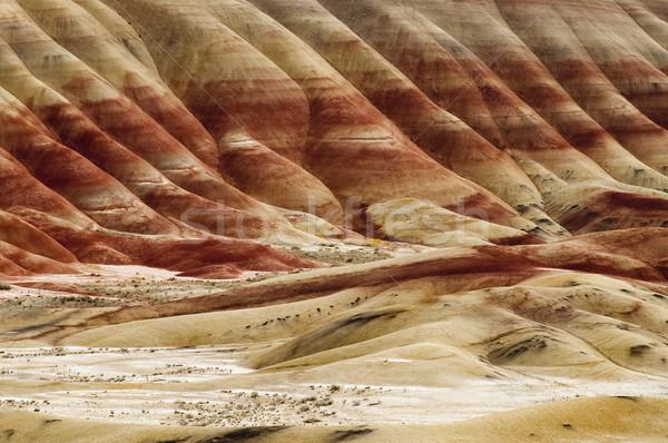 геология окрашенный холмы Орегон плотный выстрел Сток-фото © cboswell