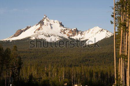 Three Fingered Jack Cascade Range Oregon State USA Stock photo © cboswell