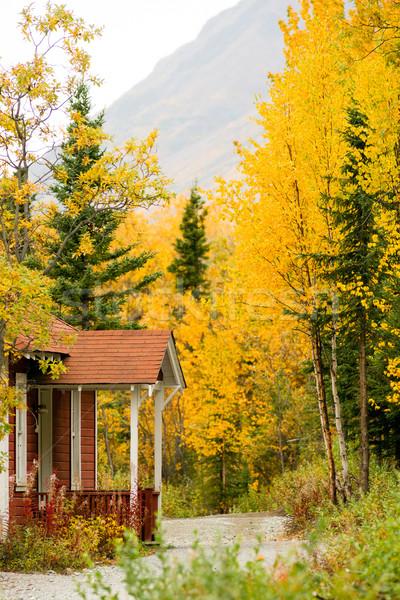 Porche montagne sentier automne laisse passé Photo stock © cboswell