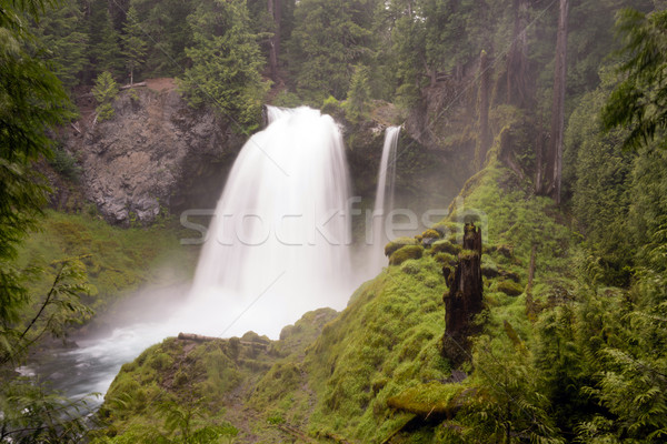 Sahalie Falls outputs a lot of water during the summer run off Stock photo © cboswell
